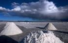 Plantean creación de empresa para explotar litio