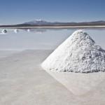 Realizan estudios que será parámetro para la explotación de litio