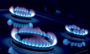 FNE investiga a distribuidoras de gas natural: oficia a industria pidiendo datos comerciales