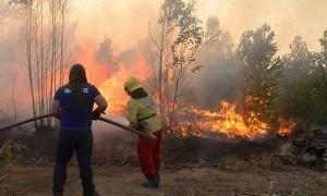 Fiscalía indaga a empresa CGE por origen de incendios en Pumanque